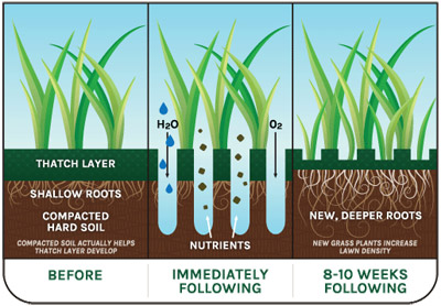 Core Aeration Benefits