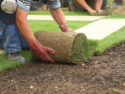 Turf Installations - Sod, Lawn Yard Seeding